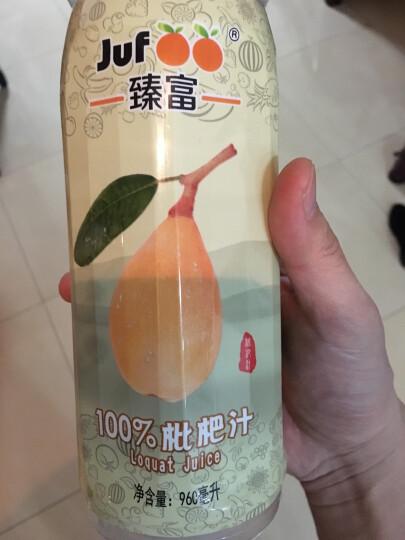 臻富(jufoo) 100%枇杷汁960ml*12大瓶整箱原味纯果汁好喝营养饮品健康不加糖不添加饮料 晒单图