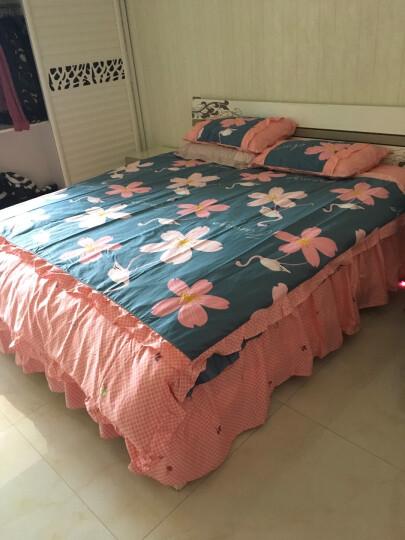 茧妃家纺 加厚夹棉床裙款四件套纯棉被套 床罩式韩版公主风床上用品 纪梵希 2米床被套220*240床裙200*220cm 晒单图