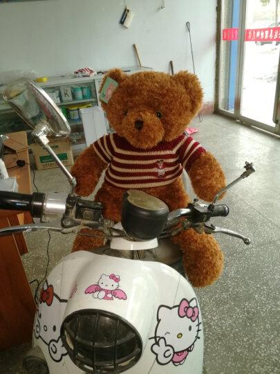 正版泰迪熊 毛绒玩具 大熊公仔可爱熊猫超大号布娃娃抱抱熊玩偶送女生生日礼物 棕色(小熊版配英国毛衣) 80cm(送毛衣+围兜+挂件+送仿真玫瑰花) 晒单图
