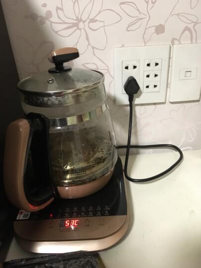 inWE 因味茶 玫瑰马黛茶 阿根廷袋泡茶10袋花草茶茶包 德国进口 晒单图