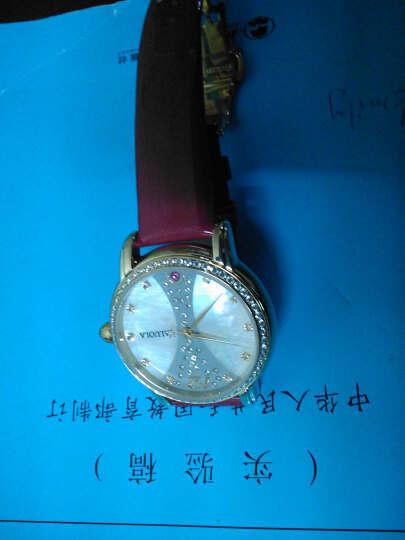 卡罗莱(CALUOLA)石英女士手表镶钻真皮带女表休闲时尚女生石英腕表学生防水CA1031 玫瑰金色墨绿色1031 晒单图