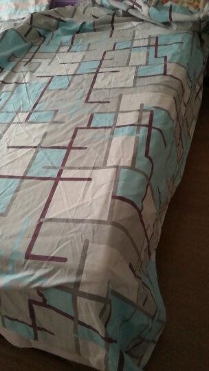 老粗布纯棉床单单件 单双人全棉被单子帆布亚麻加厚1.5m1.8m2米床 花海记忆 2米床用2.7mx2.3m 晒单图
