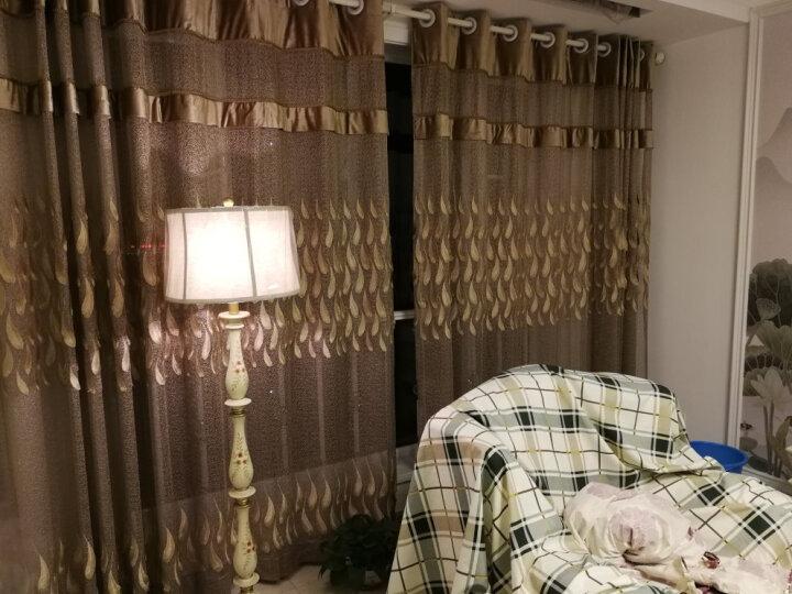 圣玛帝诺 客厅落地灯简约沙发灯手绘北欧卧室立式落地台灯 AV-1139绿色 晒单图