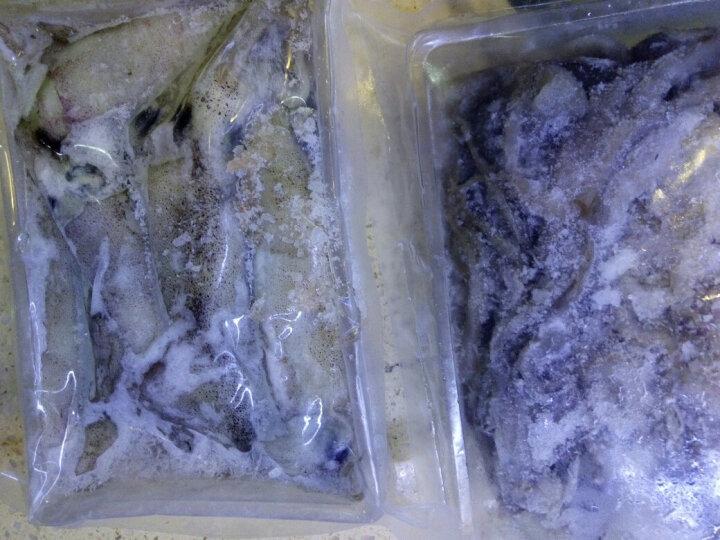 港食客 鲜冻大笔管鱼500g 野生大海兔冷冻鱿鱼年货海鲜水产鲜活 笔管鱼500g 晒单图