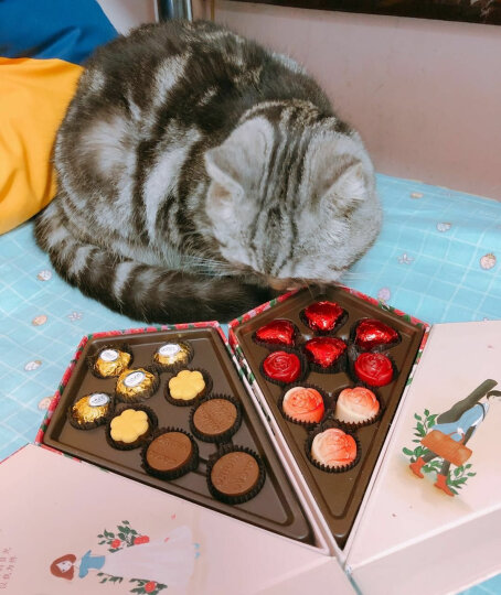 TORO情人节七夕礼物巧克力礼盒装 玫瑰花束型巧克力礼盒情人节生日礼物 男女合体版 晒单图