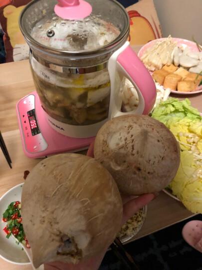 天农 清远鸡块 500g/袋 供香港 晒单图