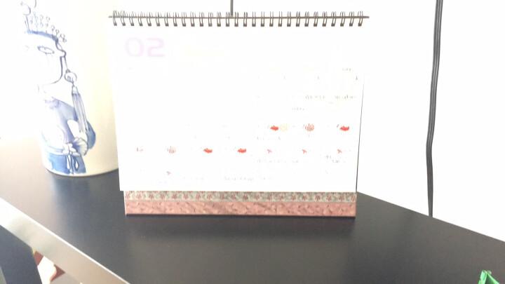 台历2019年台历定制办公台历 创意可爱桌面台历 工作计划记事台历本 【复古地图】 晒单图