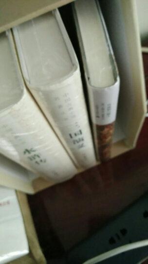 月亮和六便士  上海译文 悦悦图书 晒单图