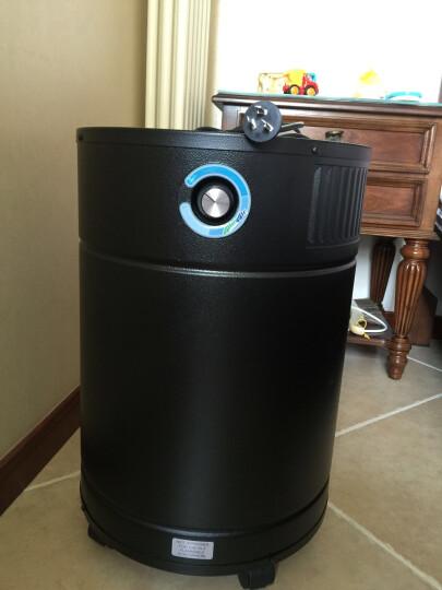 加拿大欧乐(Allerair)进口空气净化器家用强力除甲醛雾霾客厅大空间实验室6000 V 初效滤芯 晒单图