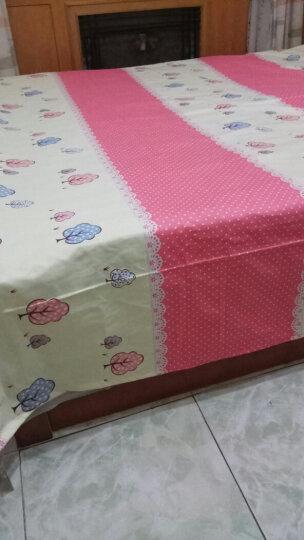 颜媞家纺 床单单件 老粗布纯棉加厚1.2m1.5m1.8米单人双人简约条纹亚麻老粗布凉席 604挥墨如画 1.35米床200x230 晒单图