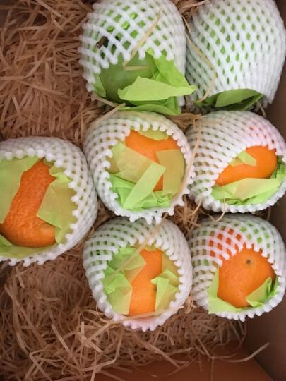 天天果园 诚心诚意水果礼盒(橙苹果火龙果奇异果)企业员工福利 节日 晒单图