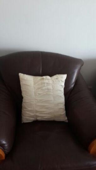 艾薇  家纺床品  原创个性 手工抱枕 沙发靠枕含芯  百折裙米43*43CM 晒单图