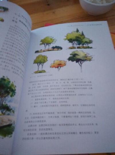 高等院校环境艺术园林景观设计专业教材:景观设计手绘表现 晒单图