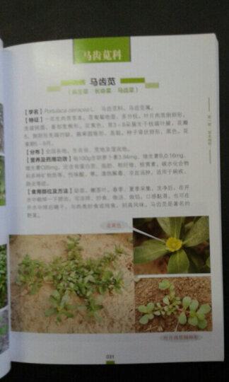 二百种野菜鉴别与食用手册 晒单图