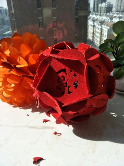 居梦坞 商场房顶装饰无纺布毛毡灯笼大红灯笼花球吊饰布置用品春节新年过年元旦2021牛年 :2套纸扇花加3套新年吊旗 晒单图