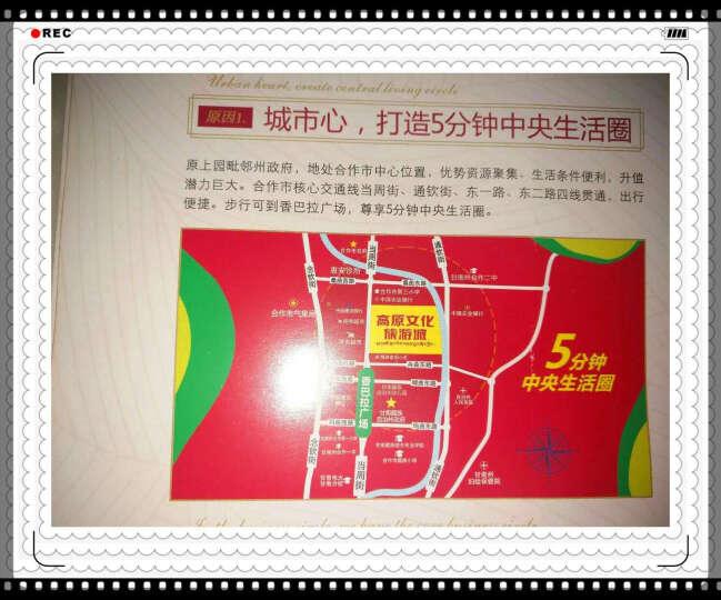 新东方·剑桥雅思语法精讲精练(附光盘) 晒单图