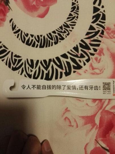 严迪(YANDY)EB01A 洁柔声波电动牙刷 (欧盟认证 全身防水 无线充电 配赠刷头x2) 晒单图