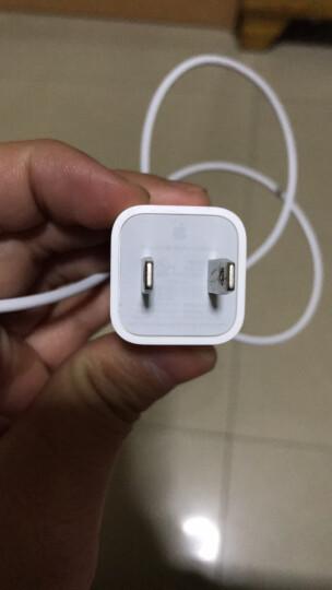 Apple 苹果原装数据线iPhone6s/8/X/7Plus/ipad USB头线充电器 港版5W充电器单个 晒单图