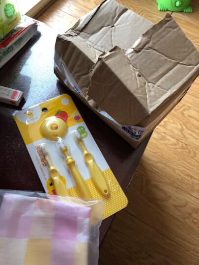 小鸡卡迪婴儿乳牙刷 宝宝护齿刷组幼儿0-1-2-3岁柔软训练软毛儿童牙刷 3支套餐 晒单图