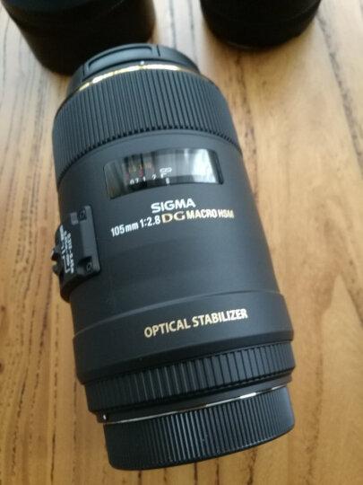 适马(SIGMA)105mm F2.8 EX DG OS HSM MACRO 全画幅 大光圈微距镜头 昆虫花草人像(佳能单反卡口) 晒单图
