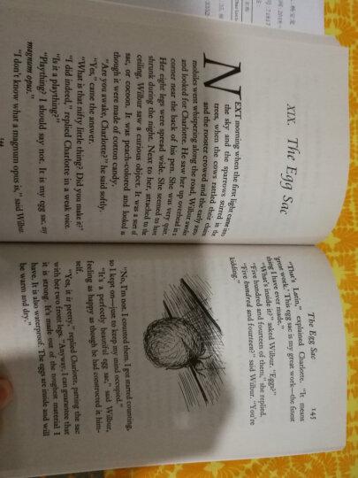 Charlotte's Web夏洛特的网/夏洛的网英文原版小说 E.B White怀特章节 送音频 晒单图