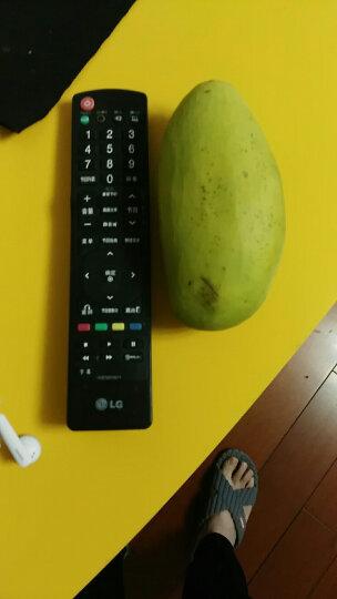好怡  越南进口大青芒果 2.5kg 单果500g以上  晒单图