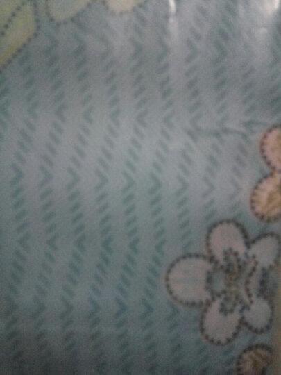 艾薇 枕套家纺 全棉枕头套 40支纯棉斜纹枕芯套 一对装 时尚巴黎 48*74cm 晒单图