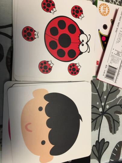 婴幼儿视觉激发0-3岁婴儿早教卡 黑白彩色卡片 视觉训练开发宝宝智力早教卡 晒单图