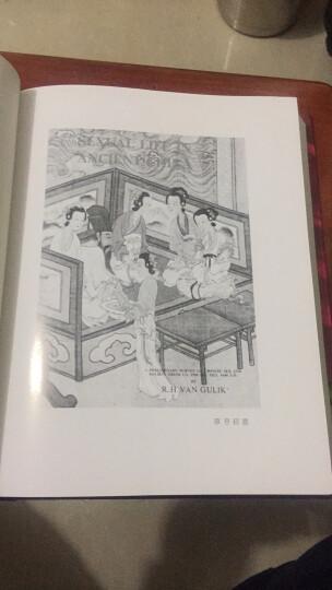 中国古代房内考:中国古代的性与社会 晒单图