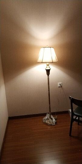 登对(DENGDUI)美式复古落地灯客厅沙发立式台灯创意克罗地亚欧式书房卧室床头LED落地台灯灯具 棕色-杠杆开关 晒单图
