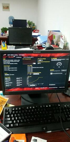 ARCTIC 导热硅脂 (台式机笔记本CPU显卡散热硅胶/导热系数8.5W/MX-4/4g装 ) 晒单图