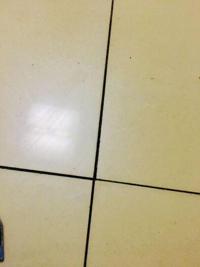 居里夫人 瓷砖美缝剂 双管双组份美缝剂 卫生间墙地面美瓷胶填缝剂真瓷胶 勾缝剂 填缝胶 金箔金 柔性美缝剂 晒单图