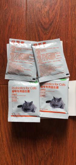 小宠EHD 肠胃宝 猫咪益生菌宠物肠胃宝5g*7包 晒单图