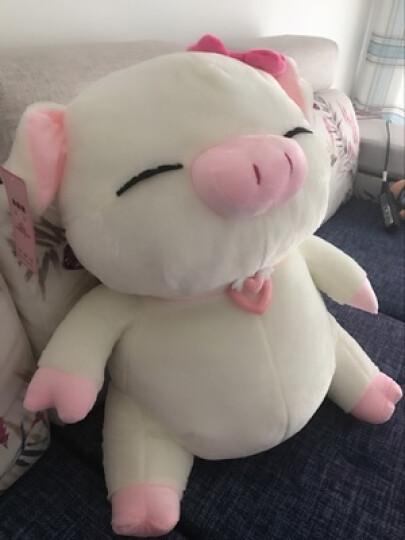水果熊 毛绒玩具猪公仔猪猪玩偶睡觉抱枕趴趴猪大白猪布娃娃大号可爱送女孩生日礼物 粉条纹 1.1米 晒单图