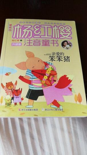 樱桃园·杨红樱注音童书:亲爱的笨笨猪(注音版) 晒单图