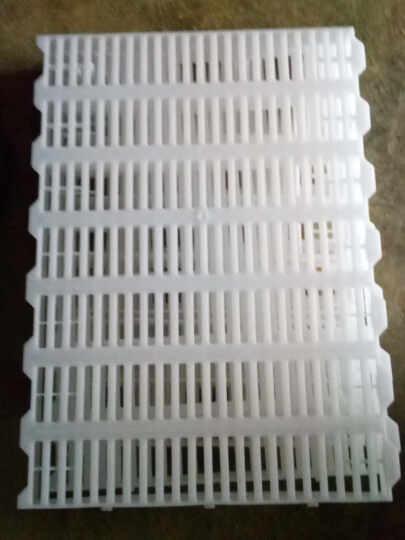富利特(FRUIT) 小猪 猪产床塑料漏粪板包邮 仔猪保育床加厚接粪板 养殖设备 猪场专用 晒单图