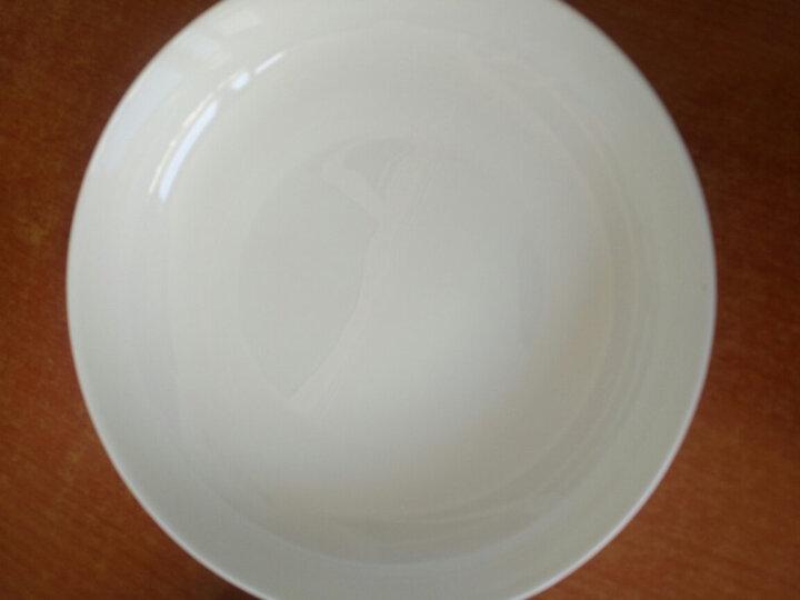 瑞玖 8寸平底澳式碗大碗汤碗无铅骨质瓷大瓷碗陶瓷碗贵妃牡丹花 纯白8寸澳碗 晒单图