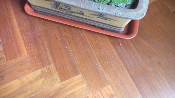 三木园艺 陶土式加厚塑料长方形托盘花盆接水盘盆垫盆景花盆托盘 砖红托450内径38.5*25 晒单图