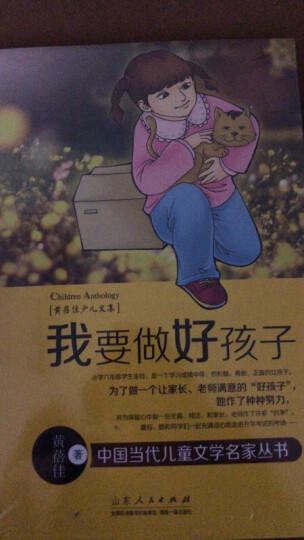 黄蓓佳少儿文集:你是我的宝贝 晒单图