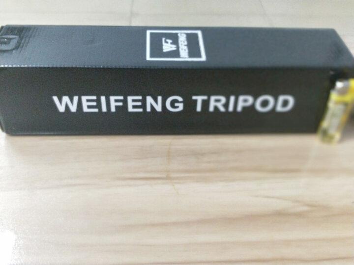 伟峰(WEIFENG)WT-3111 便携三脚架 照相机迷你三角架 微单摄像机手机拍照直播支架 晒单图