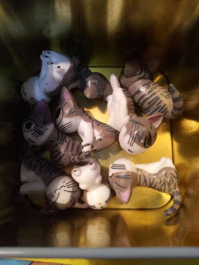 甜甜私房猫小小起司猫全套9只玩偶摆件手办动漫创意饰品生日礼物毕业礼物送女友男友 蓝色 9个 晒单图
