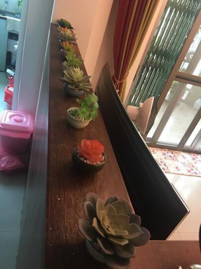 良品潮馆仿真多肉植物墙配材绿植背景墙装饰造景diy盆栽摆件 红色凤梨叶 晒单图