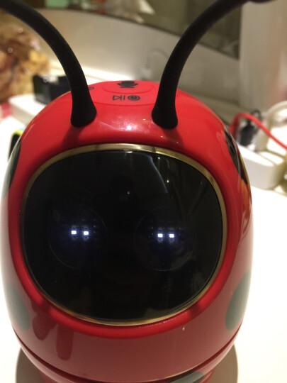 科大讯飞金龟子机器人儿童教育陪伴语音早教益智智能机器人 黄色 晒单图