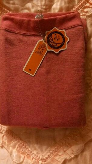 暖恋官方旗舰店拉毛保暖裤多彩女士保暖内衣毛裤WA-86 巧克力色 160cm / S 晒单图