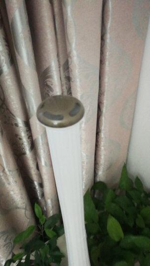 小熊(Bear) 加湿器 家用卧室孕妇婴儿空气加湿器落地式香薰大容量办公室净化加湿JSQ-B40P1 白色 晒单图