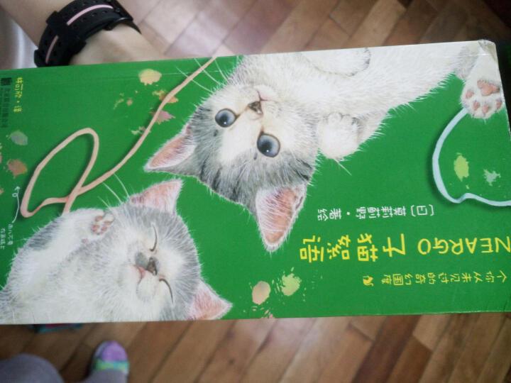 猫国物语--一个你从未见过的奇幻国度 典藏版 莫莉蓟野 日本人气漫画 晒单图