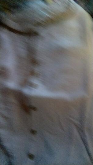 芳帛 洋气衬衫女2018夏装新款短袖气质修身打底衫上衣韩范百搭外穿荷叶围边寸衬衣潮 粉色 L 晒单图