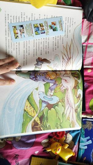 绿野仙踪——打动孩子心灵的世界经典童话 晒单图