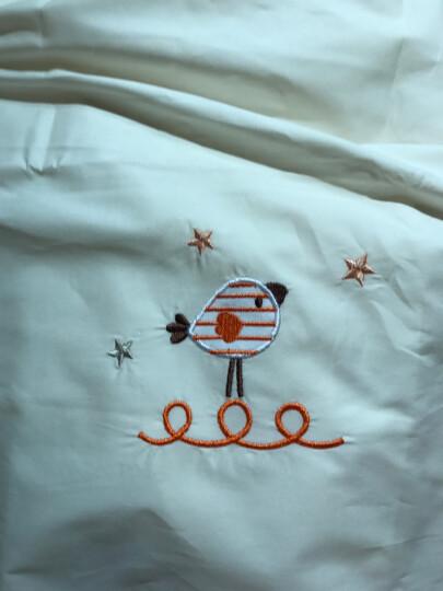 AUSTTBABY婴儿纯棉床单 宝宝被单儿童幼儿园床单被罩 泰迪熊 通用款 晒单图