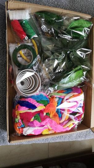 丝袜花材料包 DIY手工丝网花丝袜花材料 新手材料包 玫瑰花艺材料做花材料套装 丝网袜材料 丝袜花初学材料包 可做40朵左右 晒单图